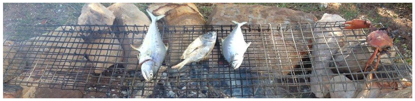 Fish on the fire